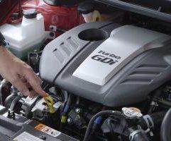 car fluid levels