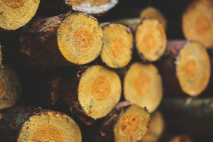 Logs for Fire